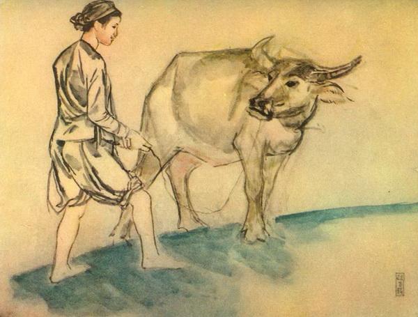 То Нгок Ван 1955 год